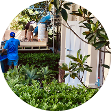 Landscaping cleaning & rubbish removal Sydney